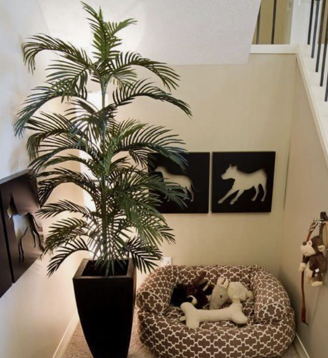 Carve a space out for your pets