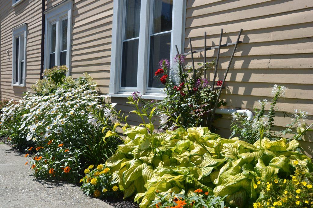 gardens along a house