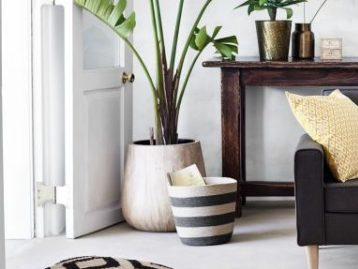 add plants and textiles to update your rooms