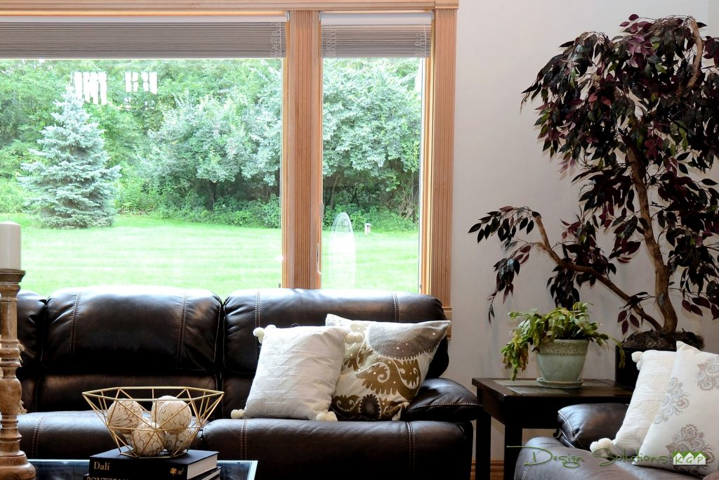 adding plants to a room make it feel warmer